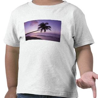 Palmeira solitária no por do sol, praia 2 do tshirt