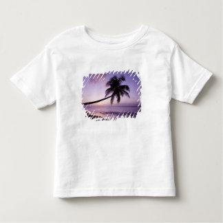 Palmeira solitária no por do sol, praia 2 do camisetas