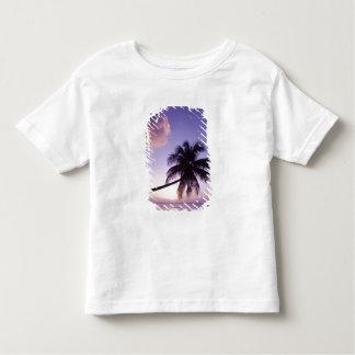 Palmeira solitária no por do sol, praia do bosque t-shirts