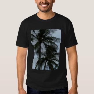 Palmeiras Camisetas