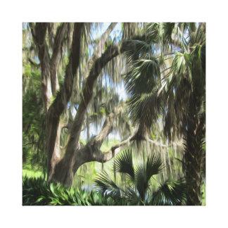 Palmeiras de Florida e impressão velhos das canvas