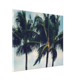 Palmeiras de Havaí Impressão Em Canvas