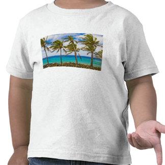 Palmeiras do coco (nucifera dos Cocos) que Camiseta