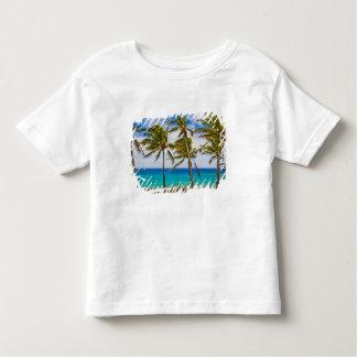 Palmeiras do coco (nucifera dos Cocos) que T-shirts