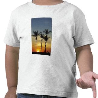Palmeiras e por do sol, praia de Mindil, Darwin
