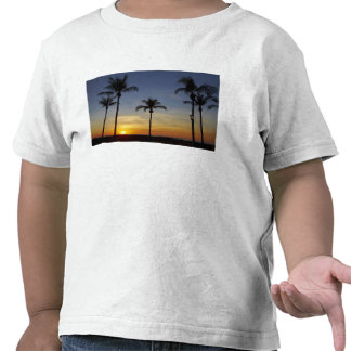 Palmeiras e por do sol praia de Mindil T-shirts