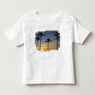 Palmeiras e por do sol, praia de Mindil Tshirts