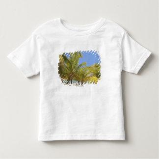 Palmeiras em uma praia branca da areia de Honduras Camisetas