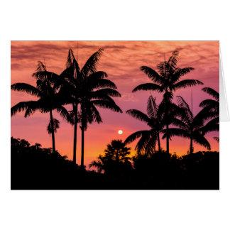 Palmeiras mostradas em silhueta, Havaí Cartão