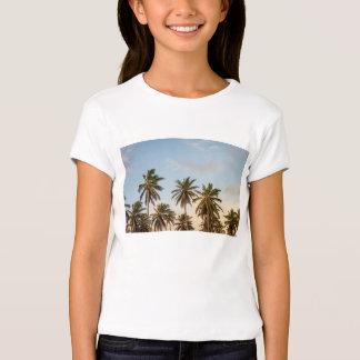 palmeiras t-shirts