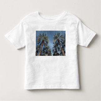 Palmeiras Tshirts
