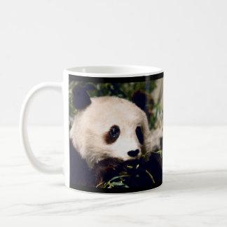 PANDA doce personalizada da caneca que MUNCHING no