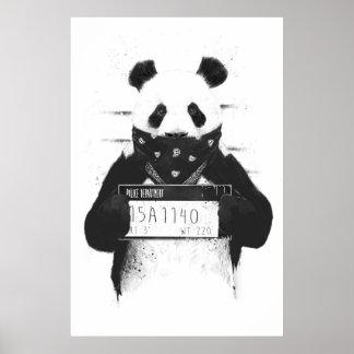 Panda má poster