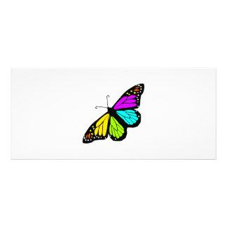 Panfleto Clipart colorido da borboleta
