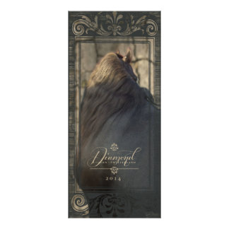 Panfleto DIAMANTE II do frisão - cremalheira/cartão