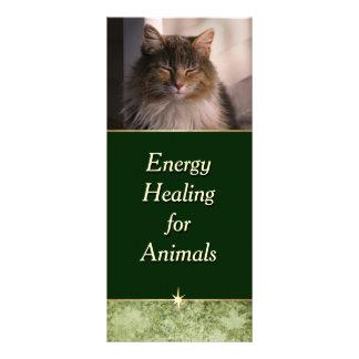 Panfleto Energia que cura para animais