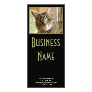 Panfleto Fim cinzento do gato malhado acima da fotografia