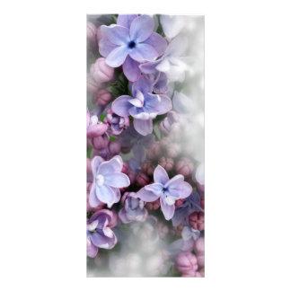 Panfleto Florescência do Lilac
