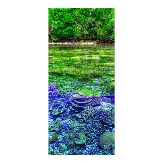 Panfleto Litoral tropical do recife de corais