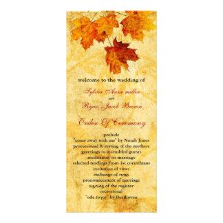 Panfleto o marrom do outono da queda deixa o programa do