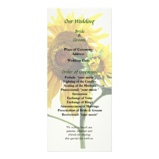 Panfleto Programa do girassol e do casamento do bebê