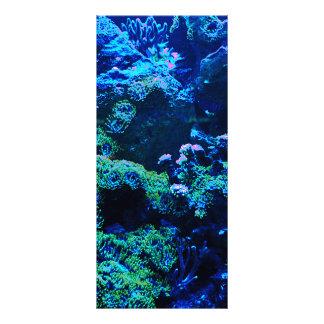 Panfleto Recife de corais tropical