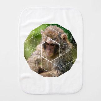 Paninho De Boca Macaco da neve