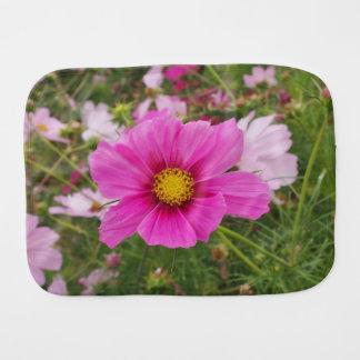 Pano De Boca Flor cor-de-rosa bonito do cosmos