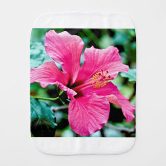 Pano De Boca Pink hibisco