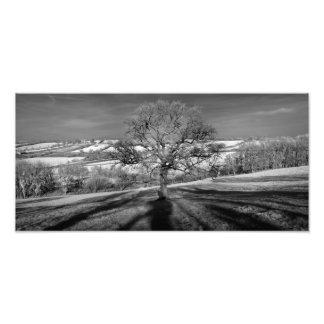 Panorama do monte de Doulting Impressão De Foto