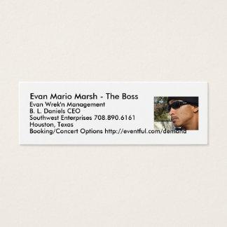 Pântano de Evan Mario - o chefe… Cartão De Visitas Mini