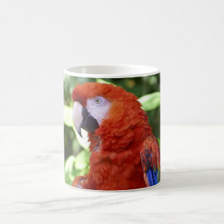Papagaio bonito caneca de café
