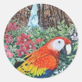 Papagaio da selva adesivo