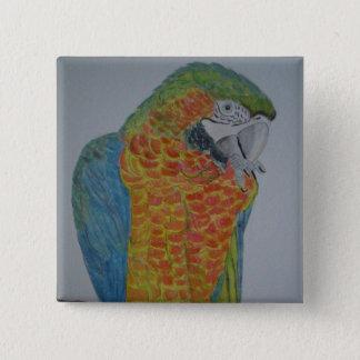 papagaio do Macaw do オウムパロット que mastiga a pé Bóton Quadrado 5.08cm