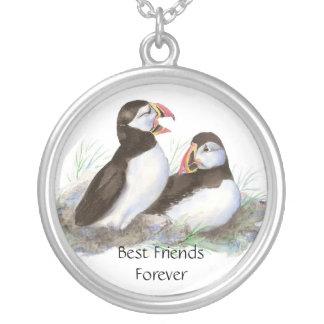 Papagaio-do-mar bonitos, melhores amigos para semp colar com pendente redondo