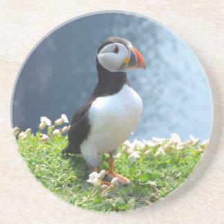 Papagaio-do-mar de Huffin Porta Copos De Arenito