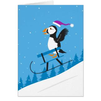 Papagaio-do-mar que Sledding abaixo de um cartão