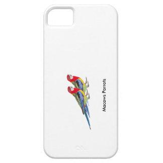 Papagaio para capas de iphone