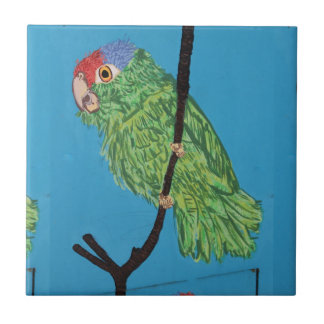 papagaio verde no azulejo azul