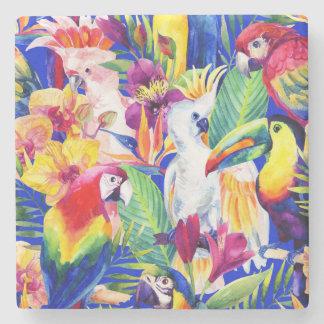 Papagaios da aguarela porta-copos de pedra