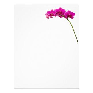 Papel de carta cor-de-rosa da orquídea