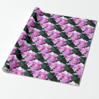 Papel De Presente A orquídea floresce close up no rosa