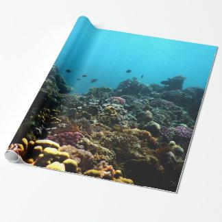 Papel De Presente Ambiente marinho no Pacífico