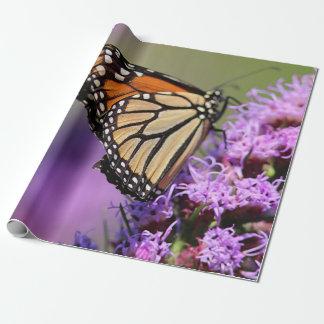 Papel De Presente Borboleta de monarca