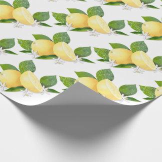 Papel De Presente Citrinos do limão botânicos
