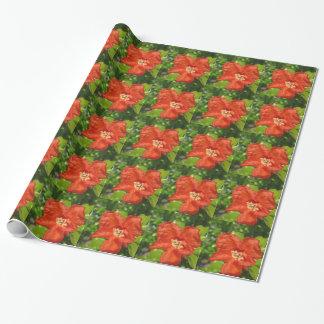 Papel De Presente Close up da flor vermelha da romã