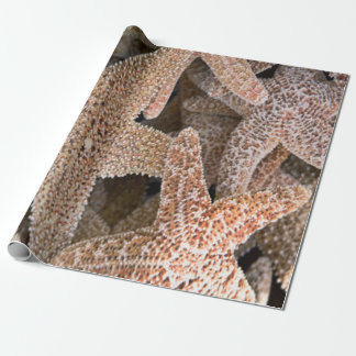 Papel De Presente Estrela do mar toda ao redor