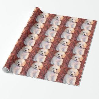 Papel De Presente Filhote de cachorro macio branco da caniche de