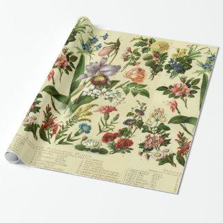 Papel De Presente Flor Botanicals do vintage
