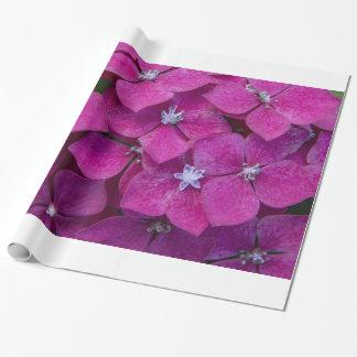 Papel De Presente Flores cor-de-rosa do Hydrangea